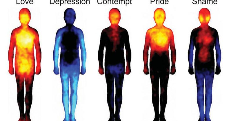 Image of How emotions CONTROL physical health from heart problems to body pain (and how to reverse it)