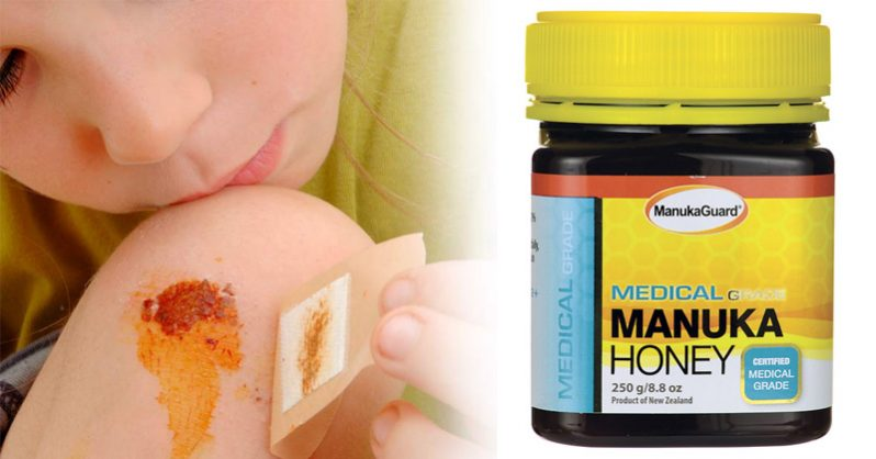 Image of How to mix and apply manuka honey to effectively treat ANY pet or human wound FAST