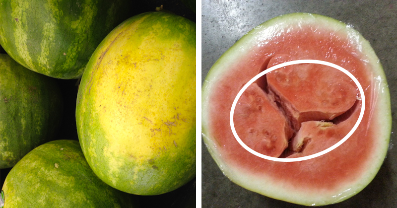 How to Pick a Juicy, Delicious and Nutrient-Packed Watermelon Every Time
