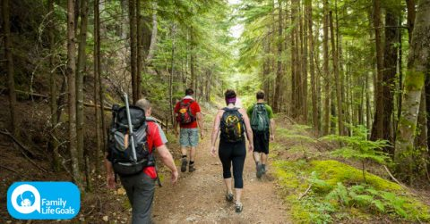 Image of Doctors: how hiking and nature literally changes your brain