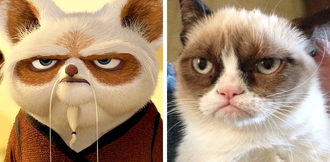grumpy cat and master shifu