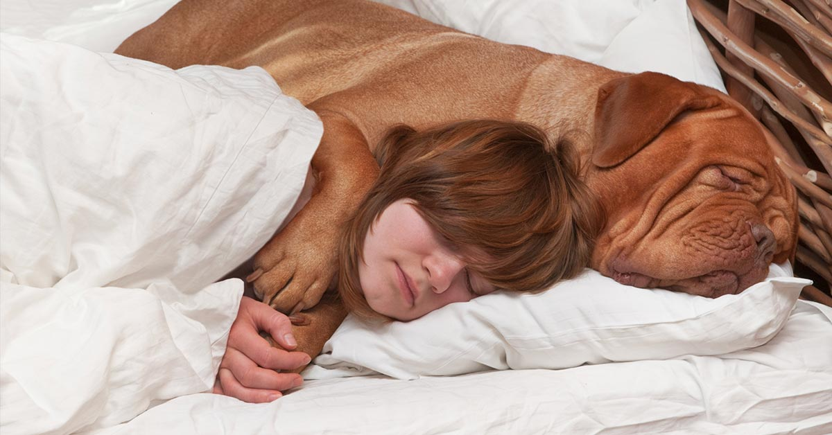 New Study Shows Women Sleep Better With Their Dogs Next To Them on the Bed