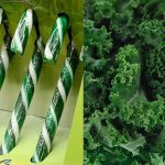 Christmas Has Been Ruined By These Kale Flavored Candy Canes That No One Can Stand