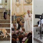Kindhearted Priest Brings Stray Dogs Into Church For Sunday Service To Help Them Find New Families