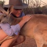 Rescued Kangaroo Gives Her Rescuers the Cutest Cuddles Every Morning