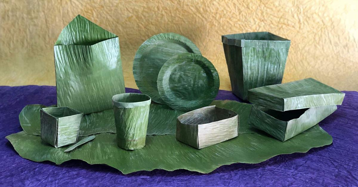 Banana Leaf Technology: A Viable Alternative to Single-Use Plastics
