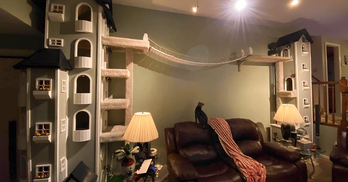 Connecticut Man Builds Two Incredible High-Rise Towers for His Cat and Is Now Selling the Building Plans