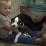 Michigan Boy Born With Cleft Lip Meets Puppy with the Same Condition, Adopts It